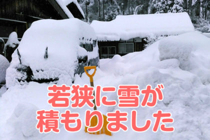 若狭路雪がつもりました